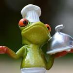 frog-927768__180