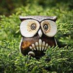 ¿Sabias que la sabiduría es cuestión de inteligencia personal?